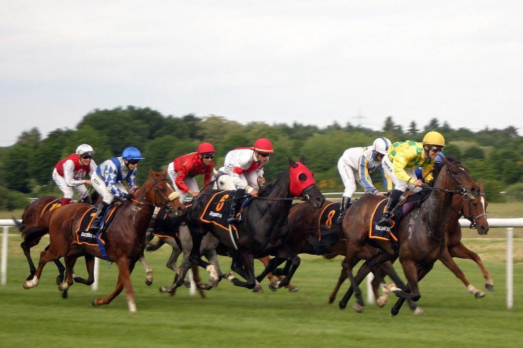 Dieses Bild ist eine Fotoaufnahme eines Pferderennens. Zu sehen sind sieben Rennpferde mit ihren Jockeys.