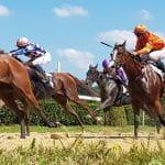 Das Bild zeigt Pferde beim Pferderennen.