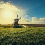 Eine niederländische Windmühle.
