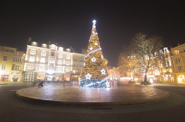 Beleuchteter Weihnachtsbaum.