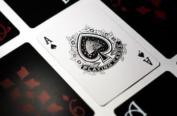 Ein Pikass zwischen umgedrehten Spielkarten.